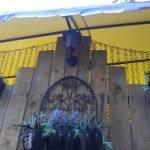 №15 Симеиз, гостевой дом в Симеизе