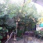 № 359 Крым, Ливадия - гостевой дом в Ливадии.