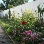 №136.Крым, Севастополь,-гостиницы,отели-Ст Учкуевка,ул.Виноградная, 12, 1500 руб.