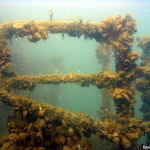 Затонувшее судно «Жан Жорес»