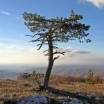 Гора Чатырдаг Крым
