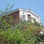 № 533 Крым, Мисхор - гостевой дом, Предгорный пер. д 6