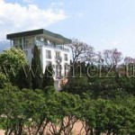 № 504 Крым, Симеиз - отель «Парк отель Симеиз»