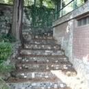 № 496 Крым, Симеиз - гостевой дом, ул. Баранова, 14