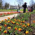 Парк Салгирка, ботанический сад ТНУ
