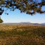 Обрыв в лесу возле Левадков