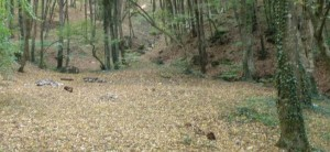 Турстоянка «Малиновая» (Малиновый ручей)