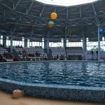 Новый дельфинарий в Евпатории