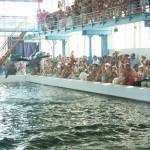 Дельфинарий Карадагский