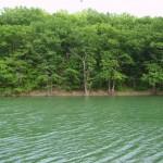 Партизанское водохранилище